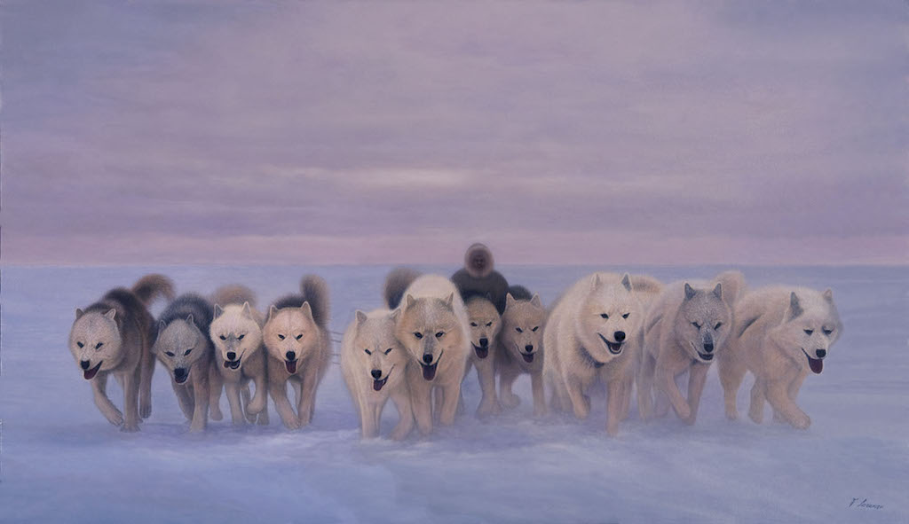 Lorenzo Fracchetti Travellers of the Cold Sled Dogs