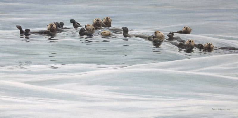 Robert Bateman Raft Of Otters