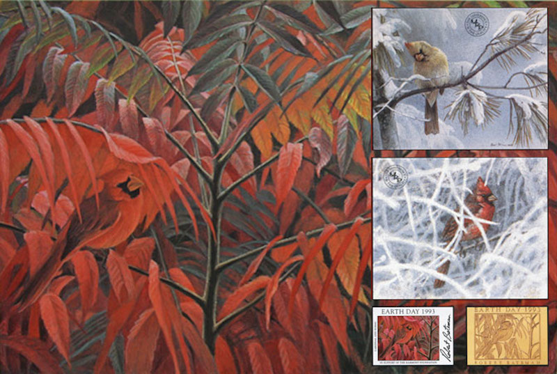 Robert Bateman Cardinal and Sumac Global Edition