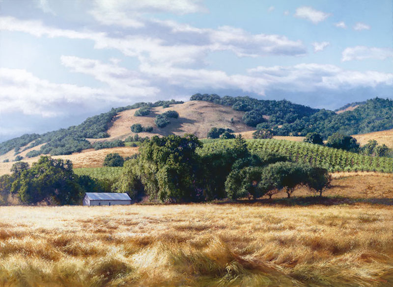 june carey california wine country