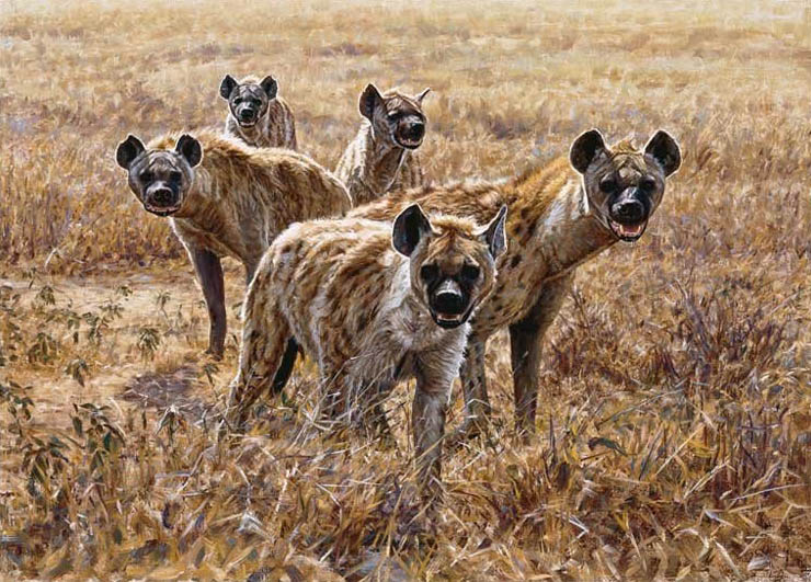John Banovich Pirates of the Plains Hyenas