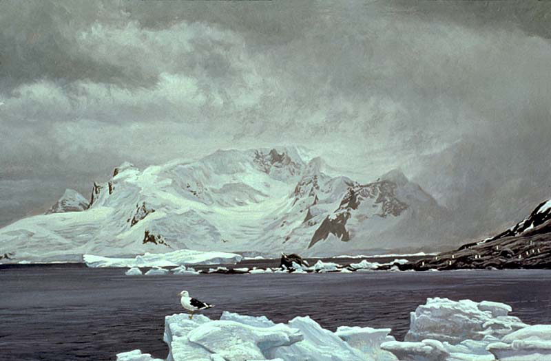 Robert Bateman Antarctic Elements