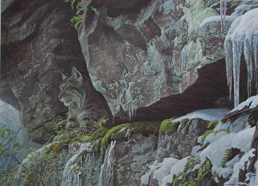 Robert Bateman At The Cliff Bobcat
