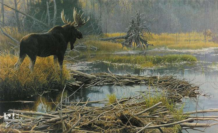 Robert Bateman Autumn Overture Moose