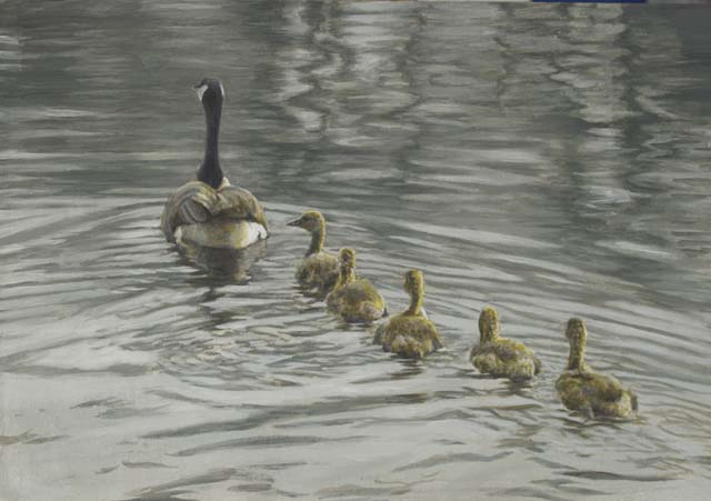 Robert Bateman Canada Goose and Goslings
