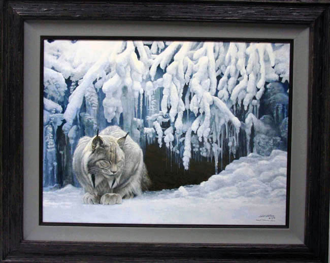 Robert Bateman Dozing Lynx Framed
