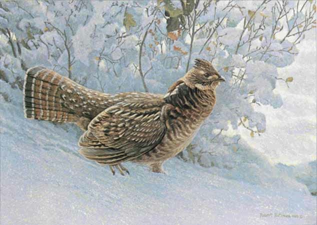 Robert Bateman Early Snowfall Ruffed Grouse