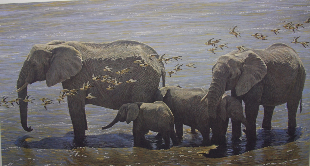 Robert Bateman Elephant Herd and Sand Grouse