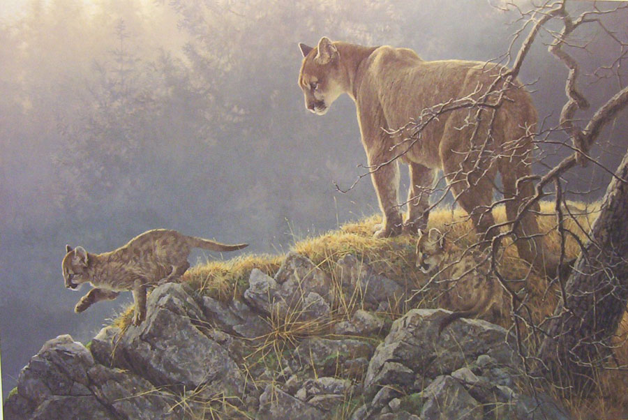 Robert Bateman Excursion Cougar and Kits