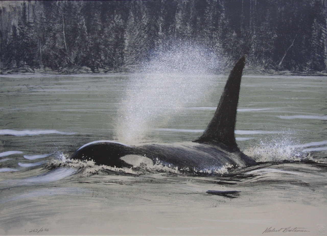 Robert Bateman Fluid Power Orca