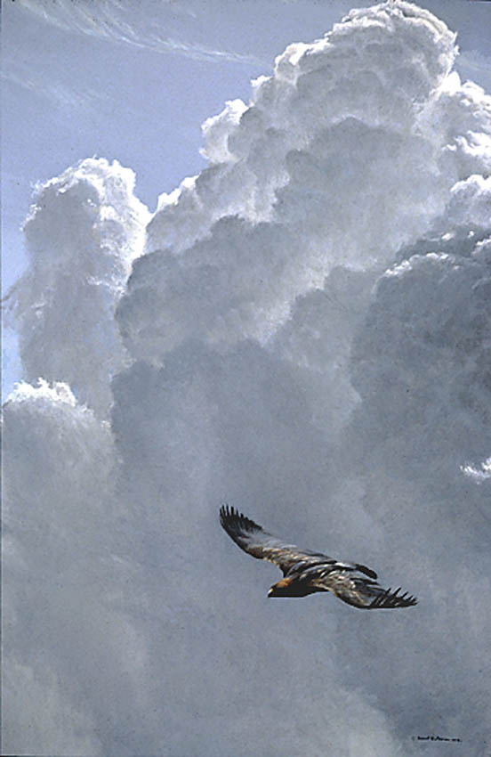 Robert Bateman Flying High Golden Eagle