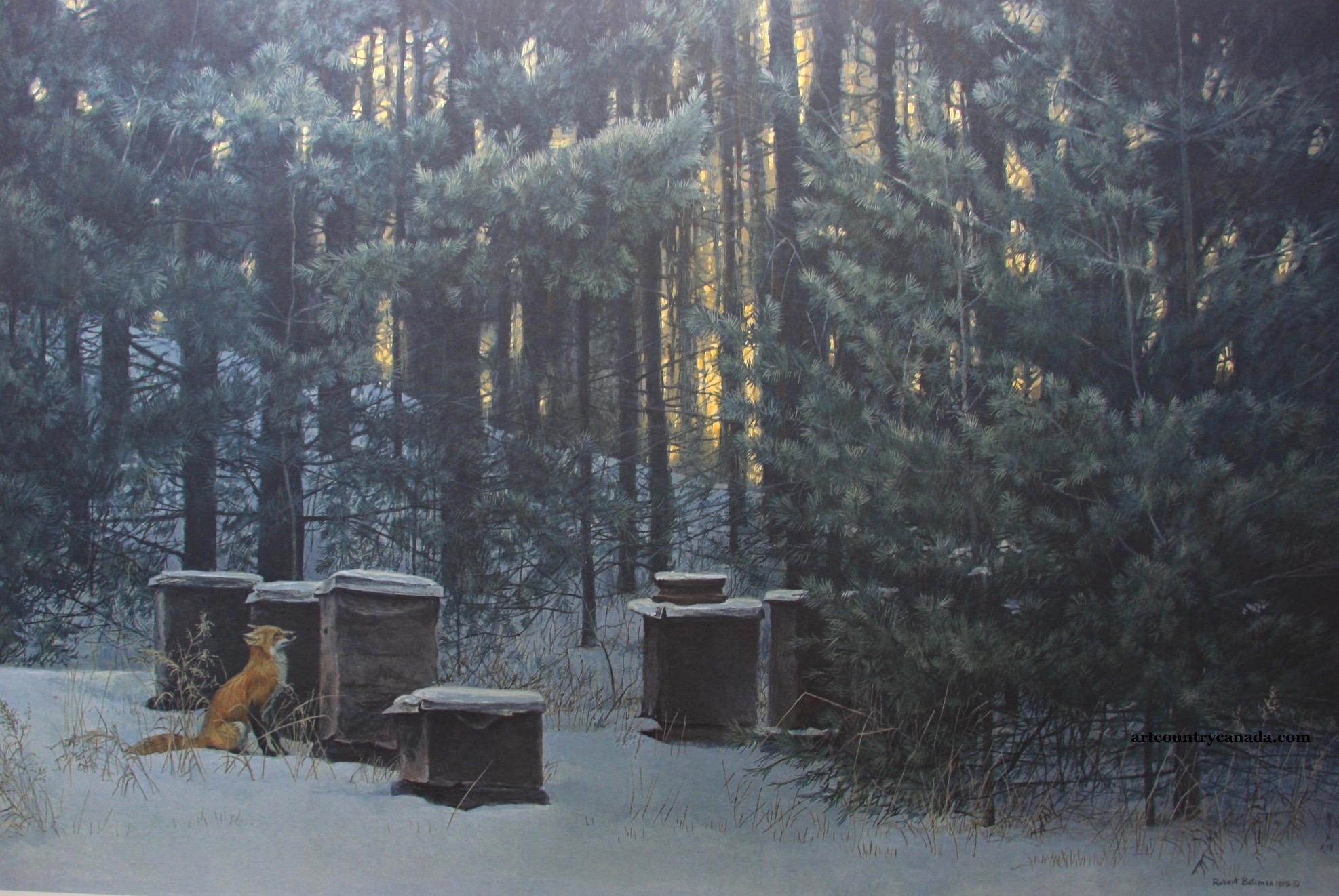 Robert Bateman Fox and Beehives