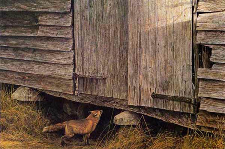 Robert Bateman Fox at The Granary