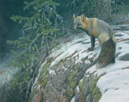 Robert Bateman Fox Crossing