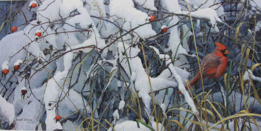 Robert Bateman Fresh Snow Cardina'