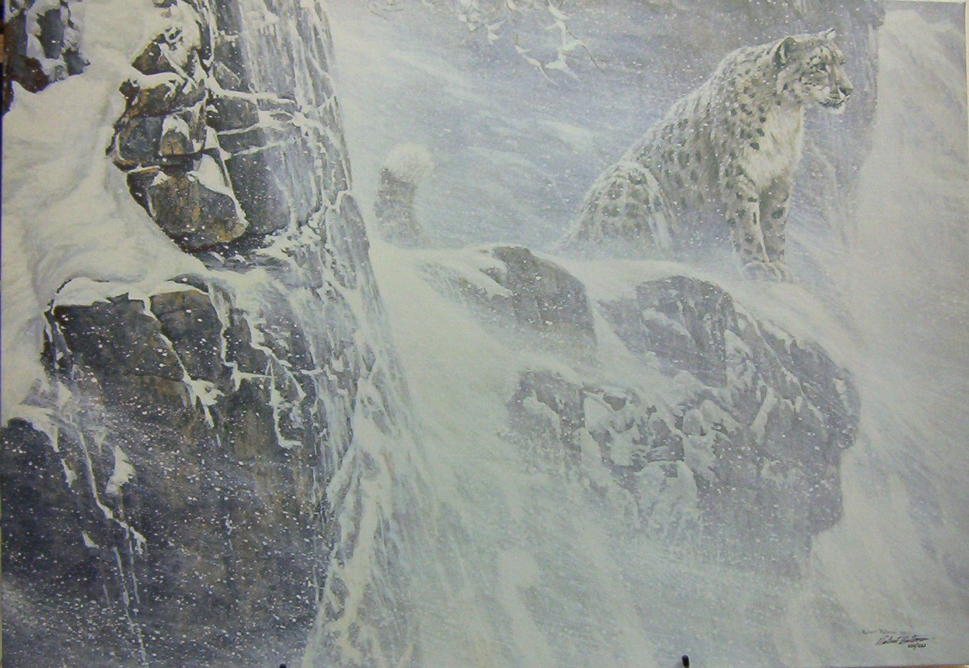 Robert Bateman High Kingdom Snow Leopard