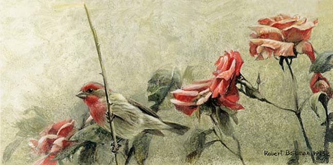 Robert Bateman House Finch and Roses