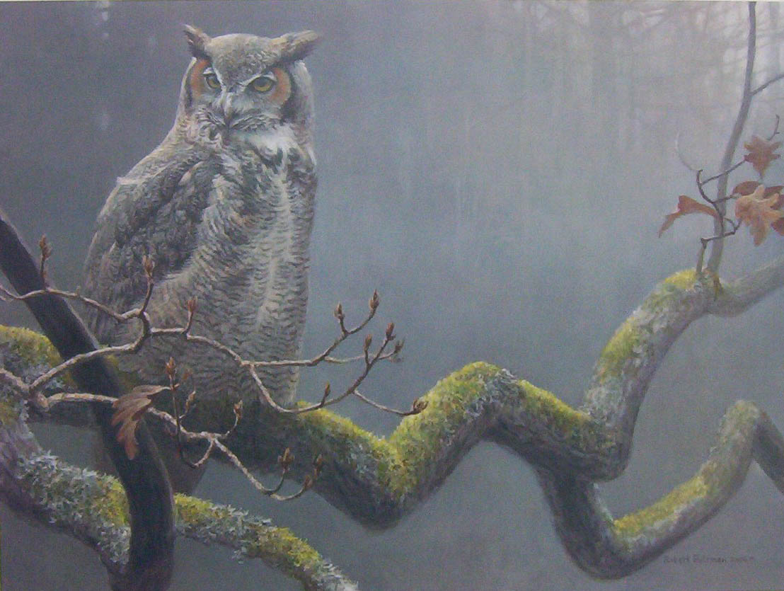 Robert Bateman In The Oak Great Horned Owl