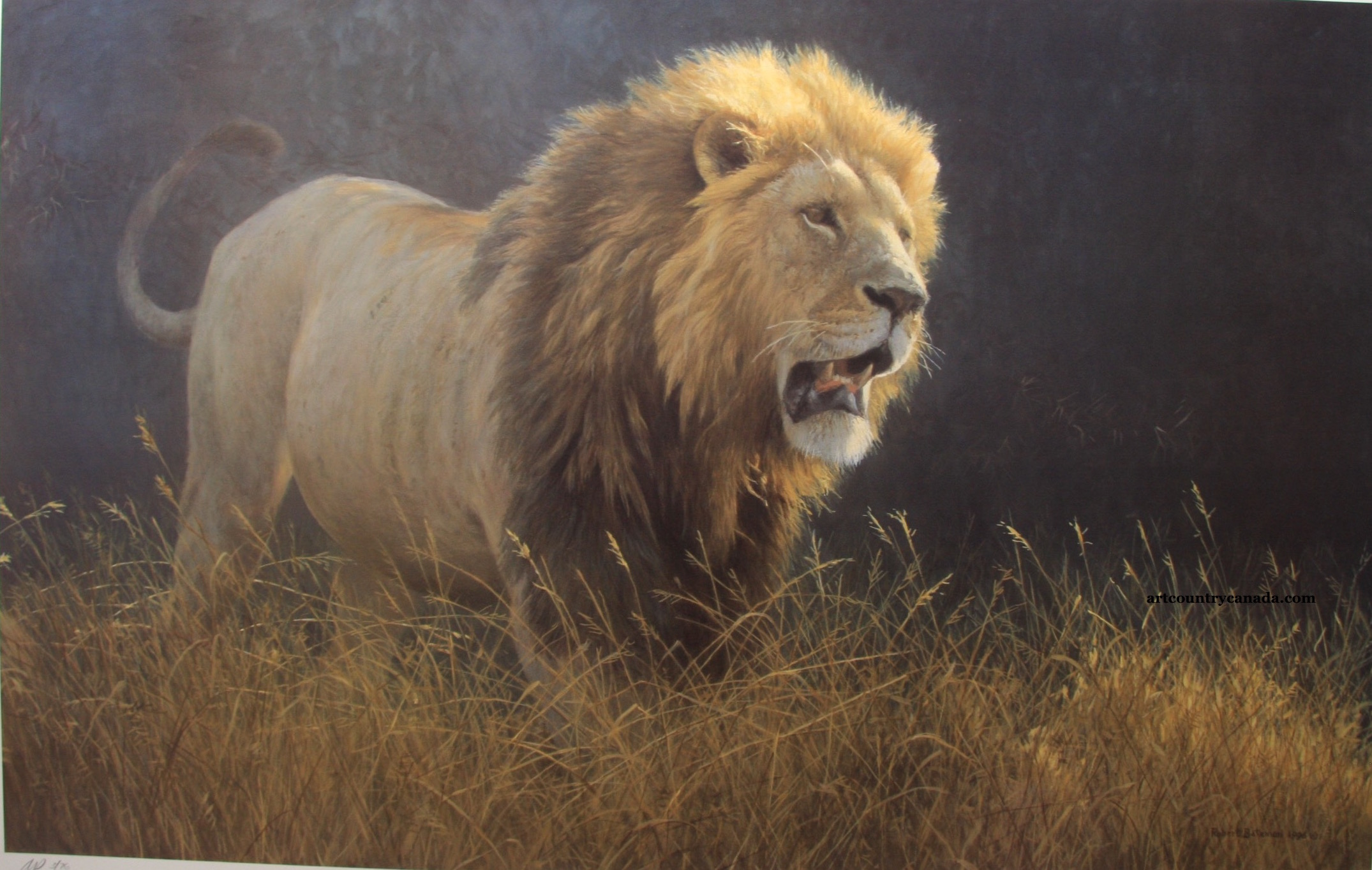 Robert Bateman Into The Light Lion