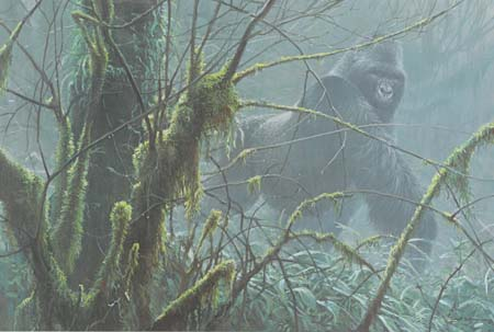 Robert Bateman Intrusion Mountain Gorilla