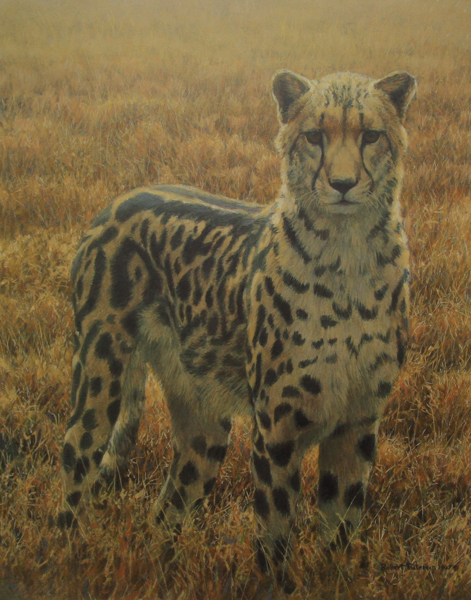 Robert Bateman King Cheetah