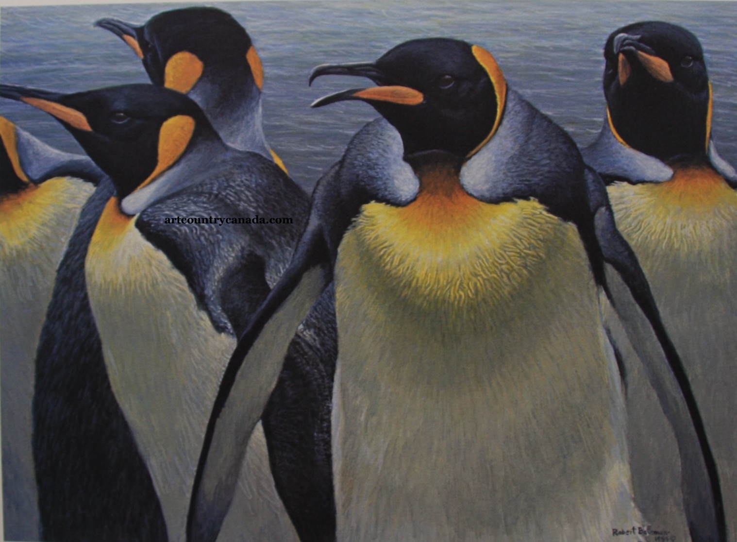 Robert bateman King Penguins
