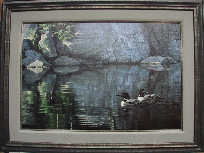 Robert Bateman Northern Reflections Loon Family Framed