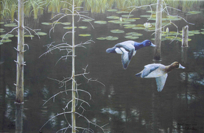 Robert Bateman Northern Wetland
