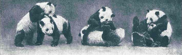 Robert Bateman Pandas At Play