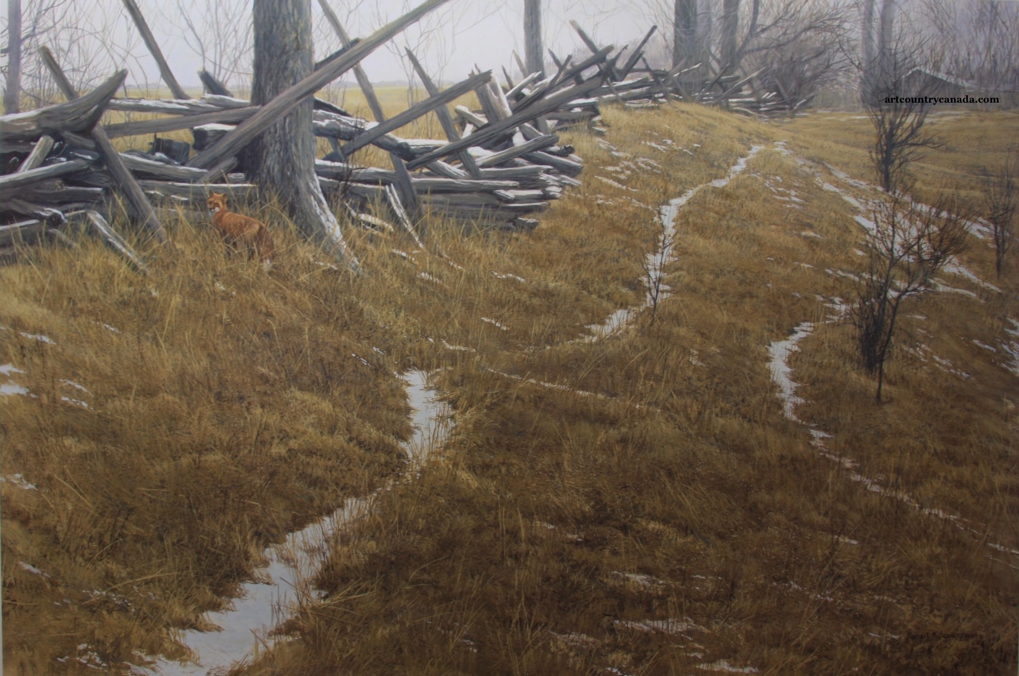 Robert Bateman Pasture Trails Red Fox