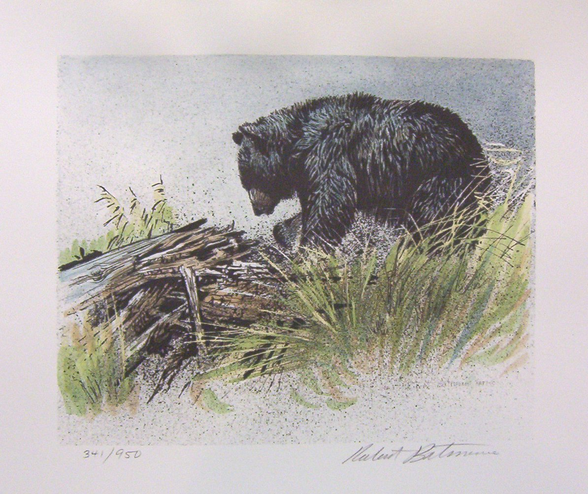 Robert Bateman Black Bear