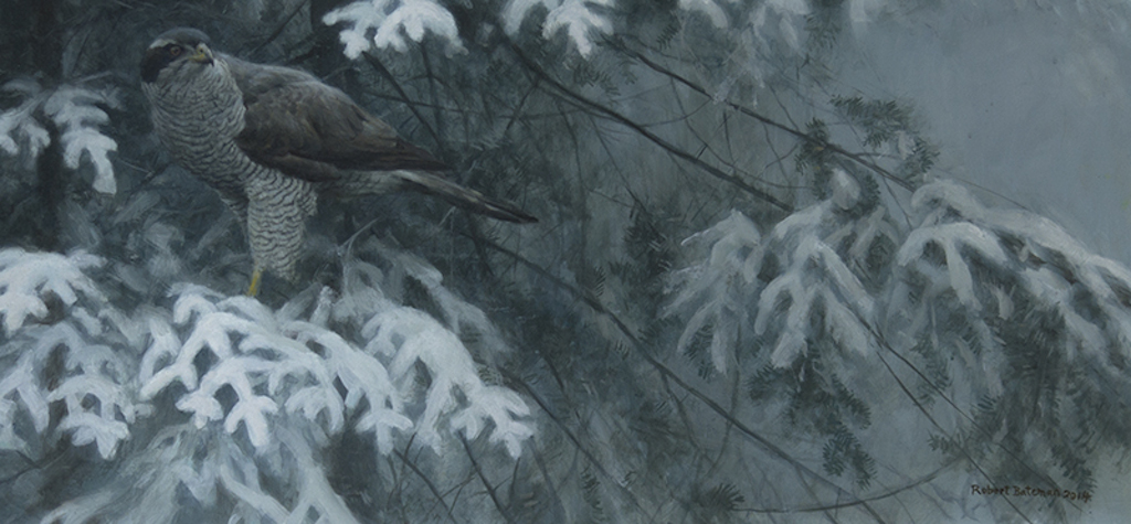 Robert Bateman Goshawk and Balsam