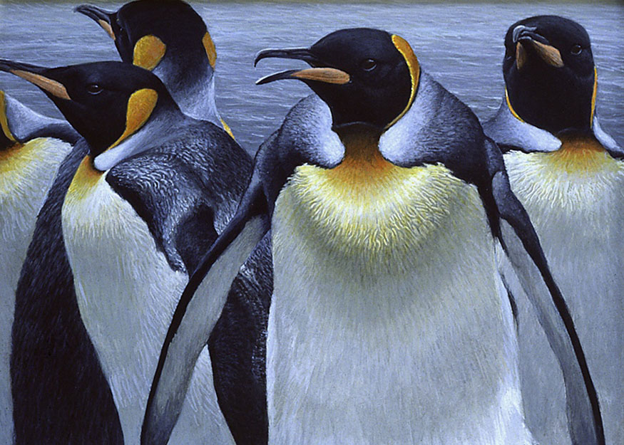 Robert Bateman King Penguins Original Painting