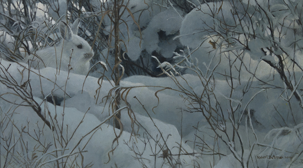 Robert Bateman New Snow Hare