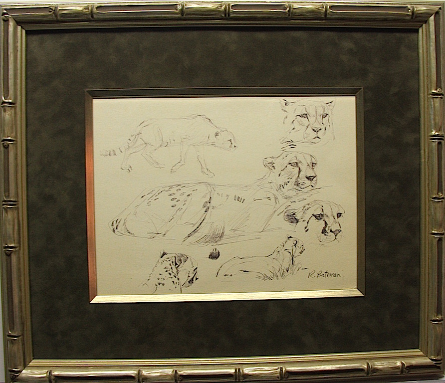 Robert Bateman Cheetah Studies Original Sketch