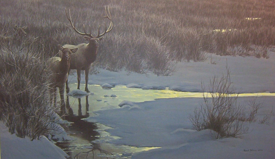 Robert Bateman Evening Light Elk