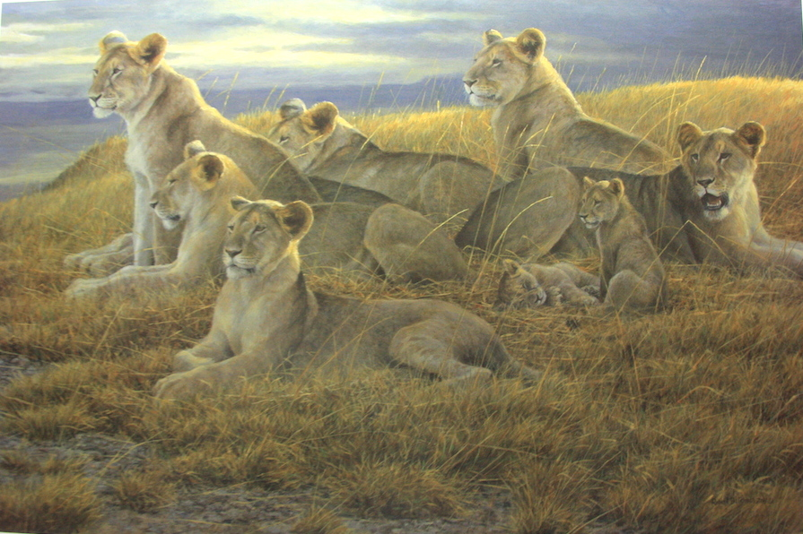 Robert Bateman Family Gathering Lioness and Cubs