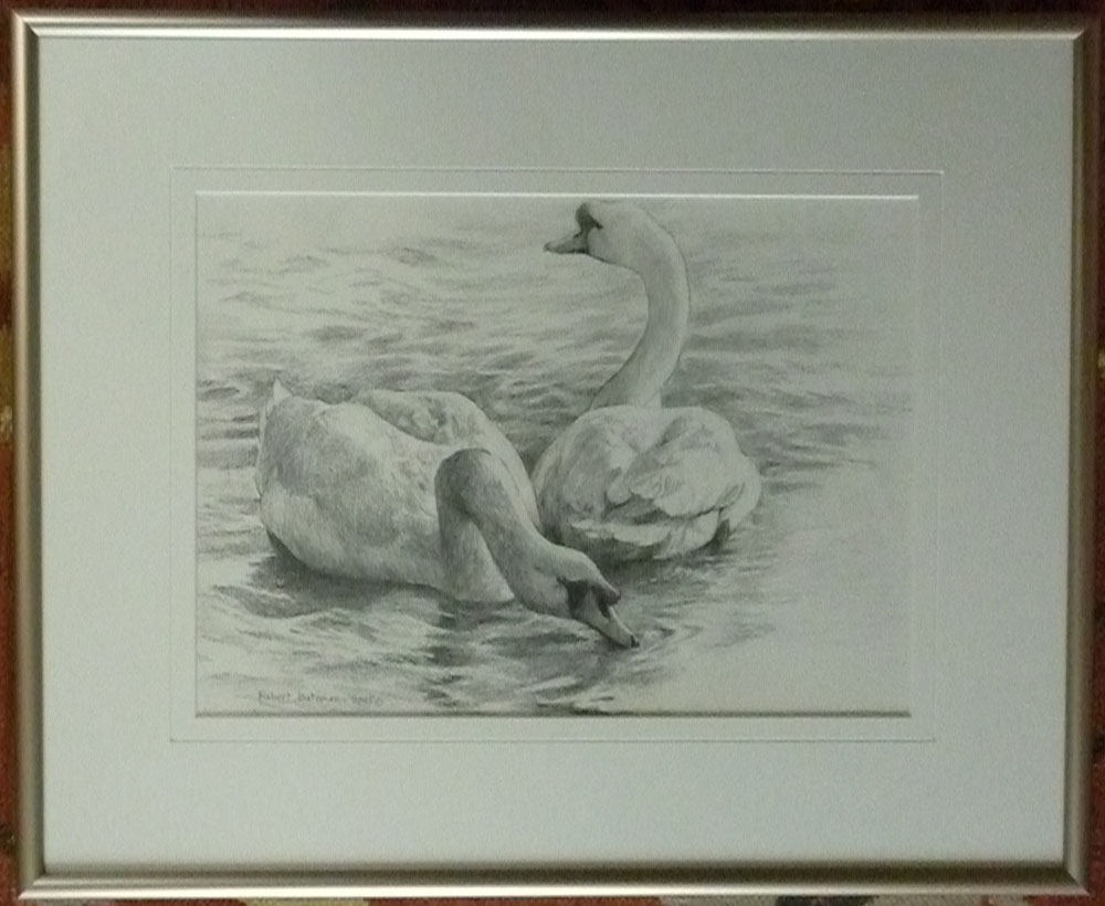 Robert Bateman Original sketch Swans
