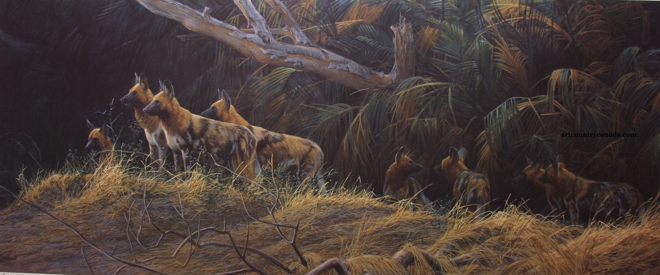 Robert Bateman Painted Dogs