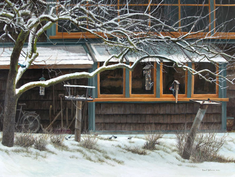 Robert Bateman Studio Windows and Bird Feeders