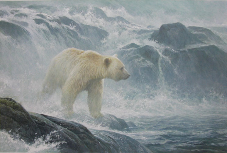 Robert bateman Salmon Watch KERMODE BEAR