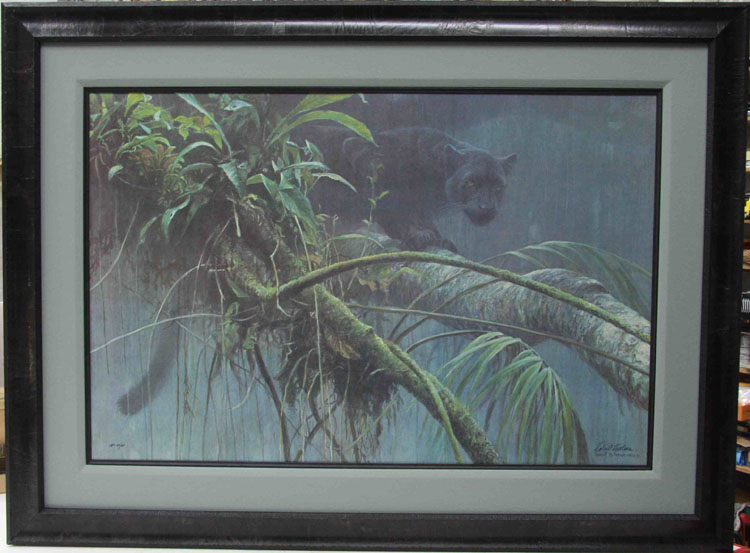 Robert Bateman Shadow Of The Rainforest