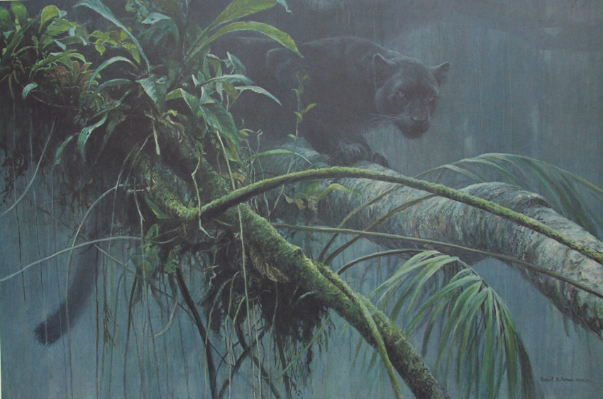 Robert Bateman Shadow Of the Rainforest Black Jaguar Panther