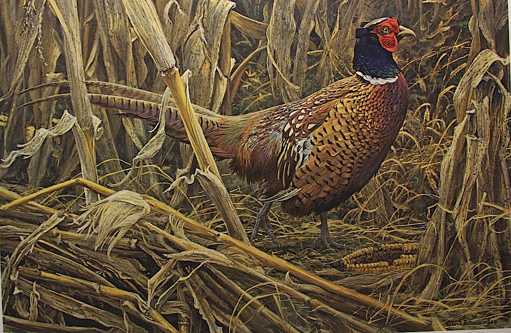 Robert Bateman Strutting Ring Necked Pheasant