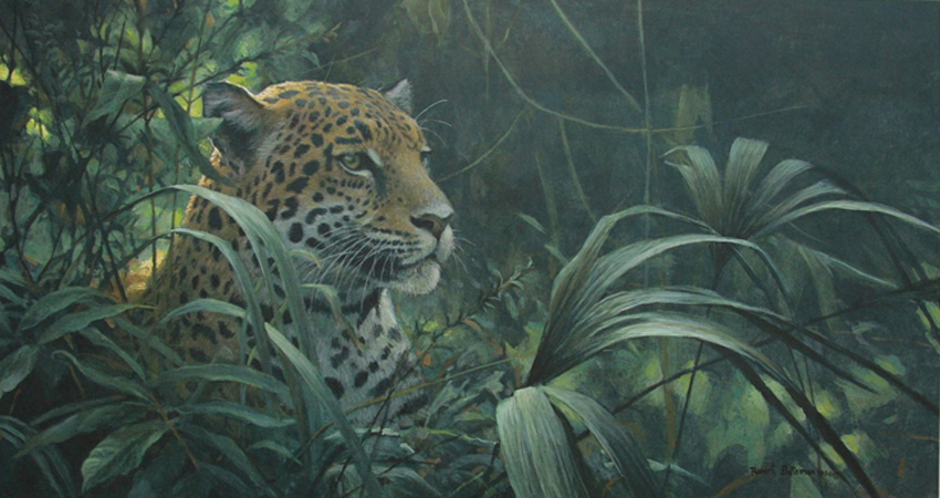 Robert Bateman Symbol of the Rainforest Spotted Jaguar