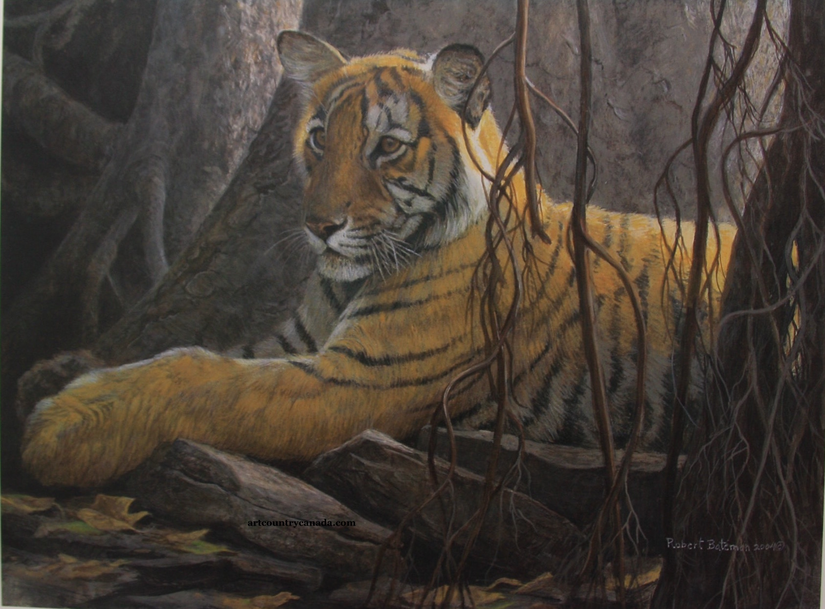 Robert Bateman Under The Banyan Siberian Tiger