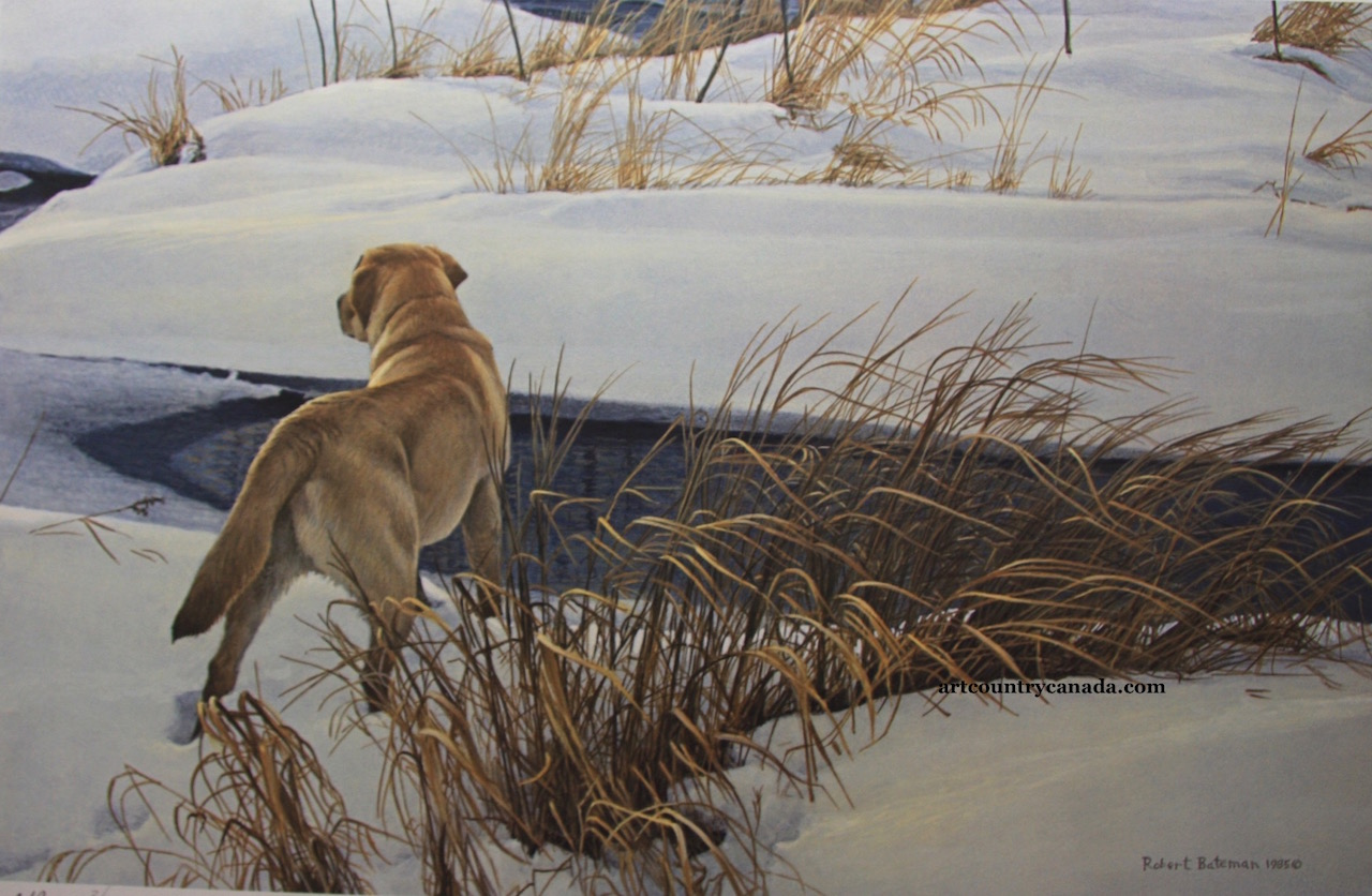Robert Bateman Winter Companion Limited Edition Print