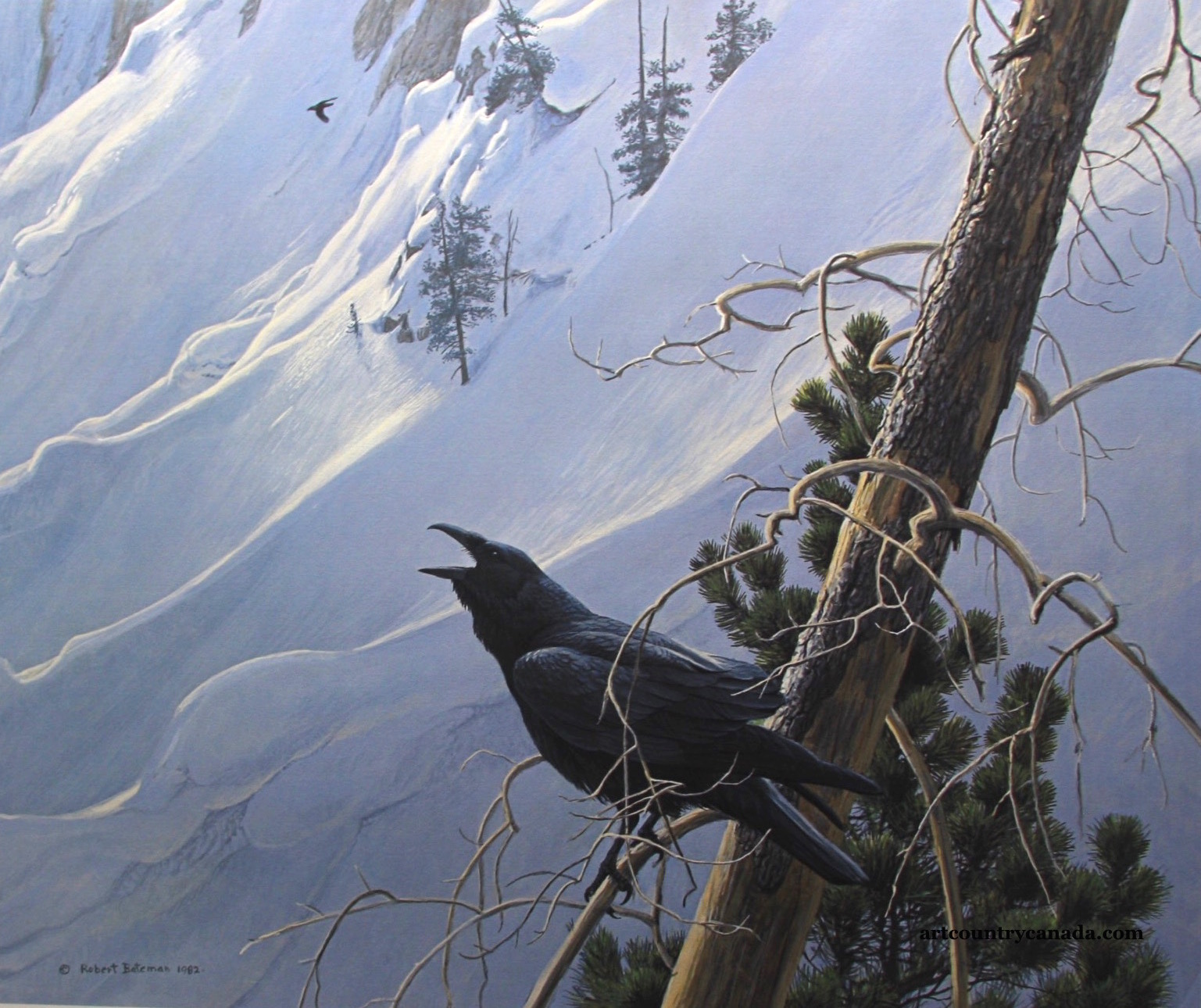 Robert Bateman Winter IN The Mountains Raven Limited Edition Print