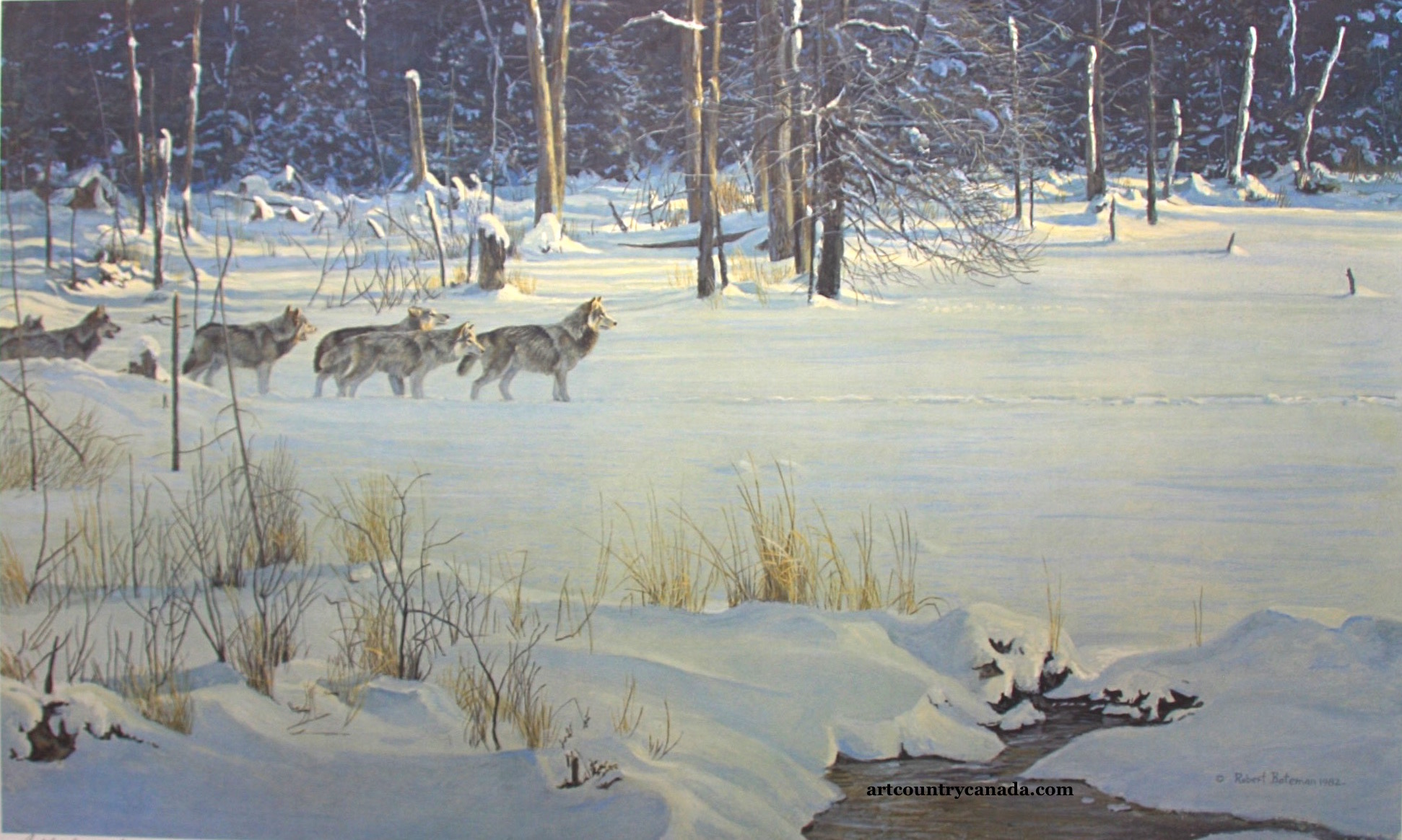 Robert Bateman Wolves On The Trail