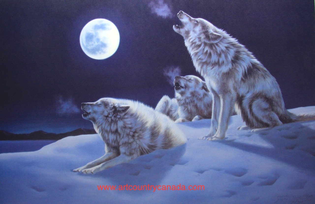 Maurade Baynton Night Song Wolves